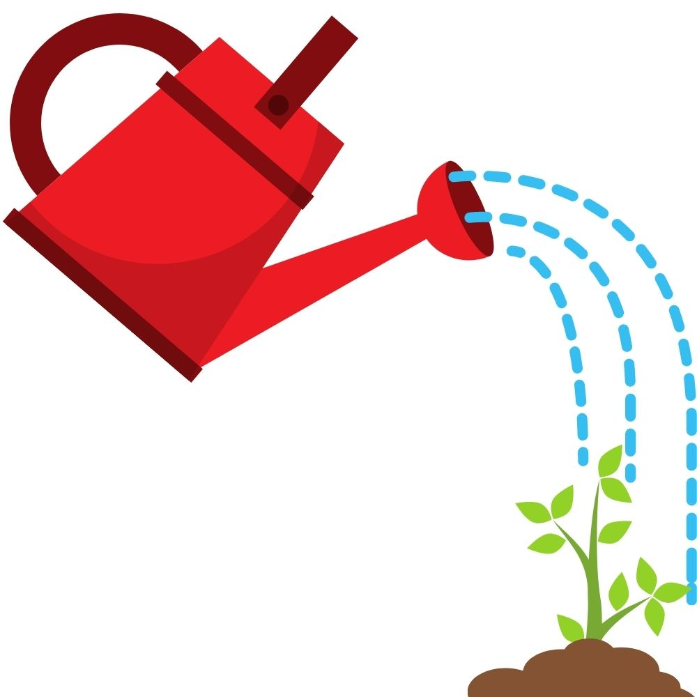 watering can watering starts